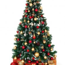 елка в аренду